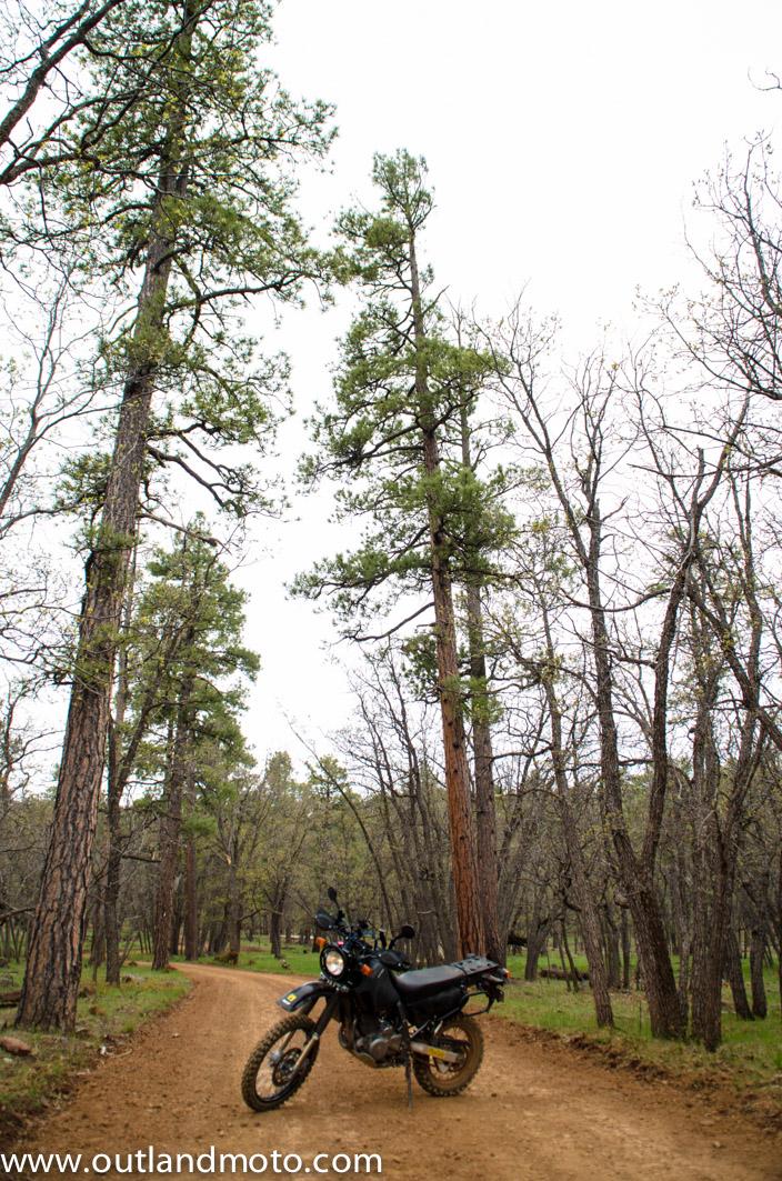 OUTLAND MOTO – Adventure on a Budget – Suzuki DR650SE